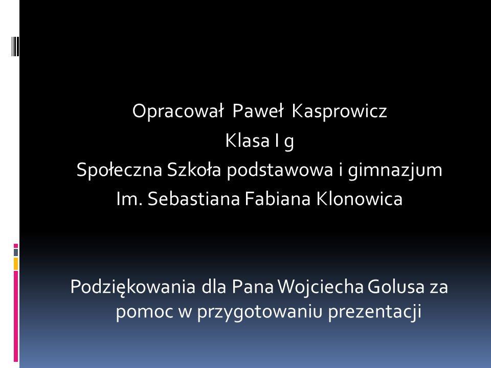 Opracował Paweł Kasprowicz Klasa I g Społeczna Szkoła podstawowa i gimnazjum Im.