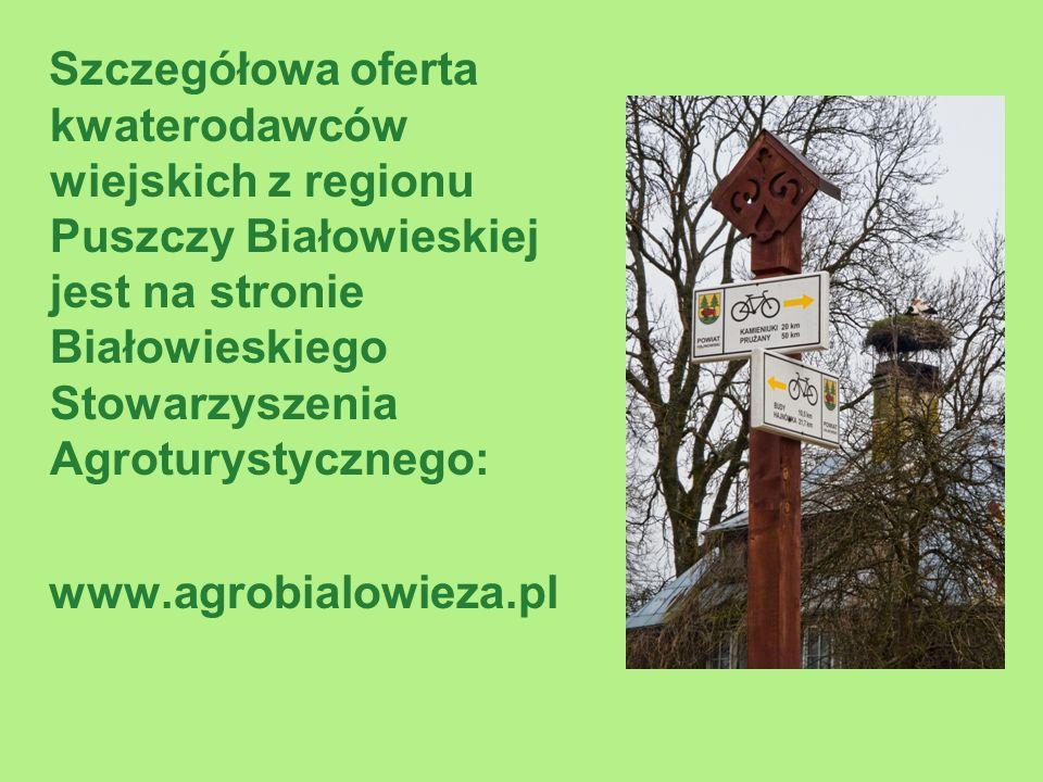 Szczegółowa oferta kwaterodawców wiejskich z regionu Puszczy Białowieskiej jest na stronie Białowieskiego Stowarzyszenia Agroturystycznego: www.agrobialowieza.pl