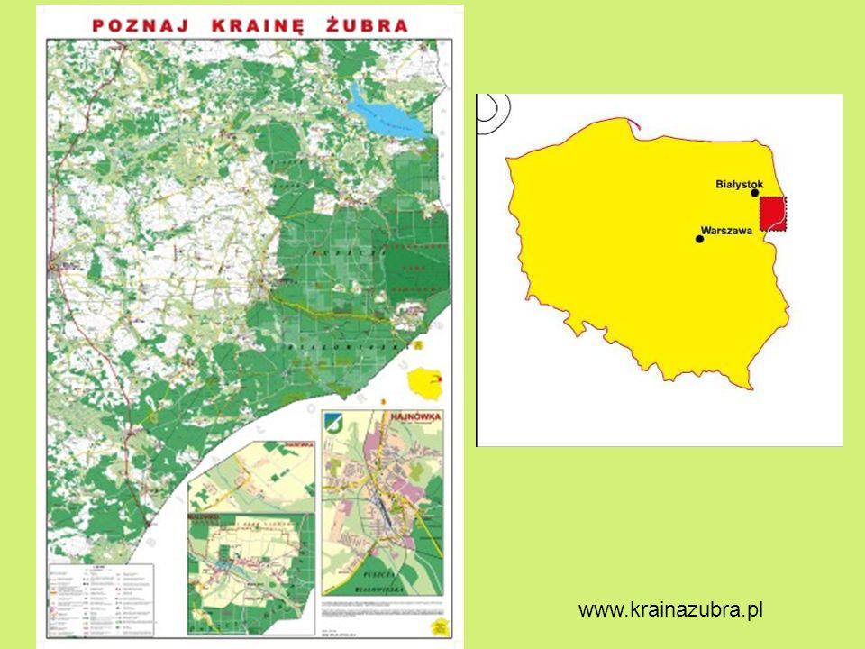 www.krainazubra.pl