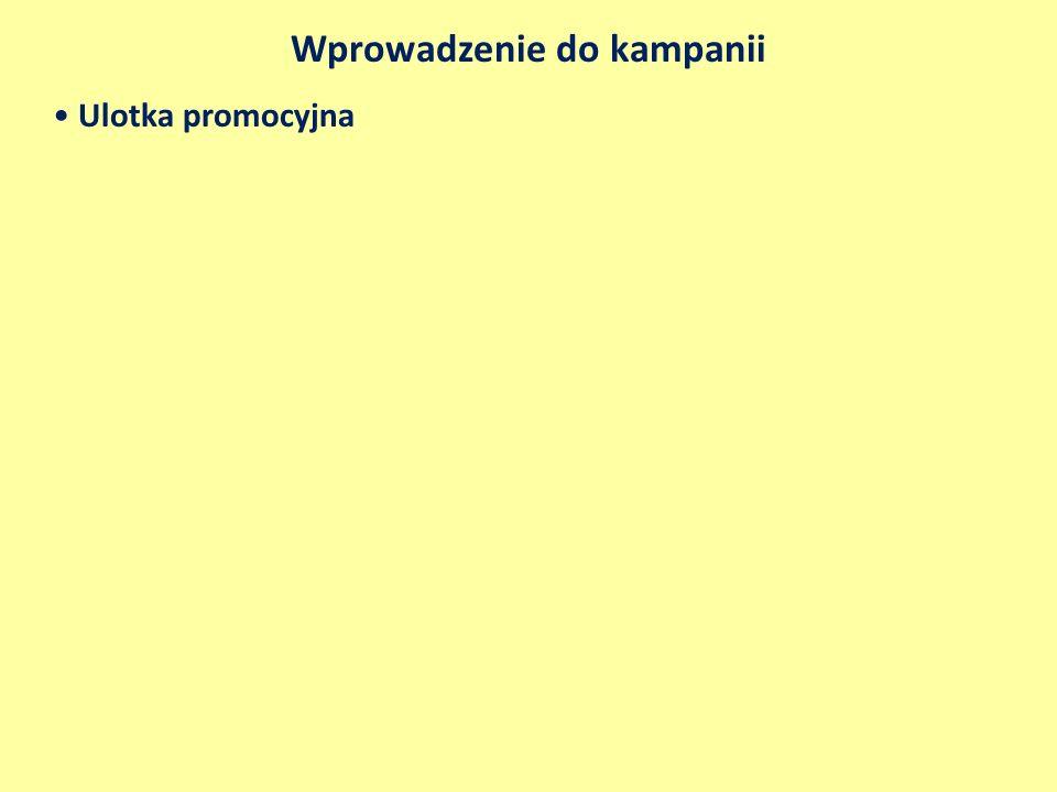 Kanały komunikacji i narzędzia promocji Media - Dwutygodniowy pakiet emisyjny w TVP3 Warszawa do wykorzystania do końca czerwca 2011, obejmujący 20 emisji 5 sekundowych spotów reklamowych w paśmie przed prognozą pogody w godzinach 18.00 – 22.00 - Emisje 15 sekundowych spotów Suwalszczyzna kraina jak baśń na Mega Ekranie w Warszawie, na skrzyżowaniu ulic Marszałkowskiej i Świętokrzyskiej – 140 spotów dziennie w godzinach 6.00 – 22.00 przez 150 dni w 2011 r.