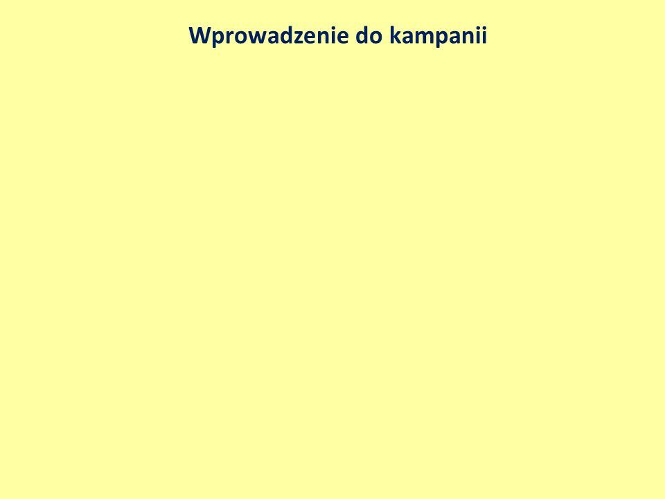 Pakiet powitalny na Suwalszczyźnie - glejt Narzędzia promocji