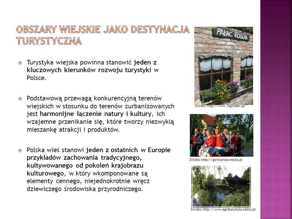 Turystyka wiejska powinna stanowić jeden z kluczowych kierunków rozwoju turystyki w Polsce. Podstawową przewagą konkurencyjną terenów wiejskich w stos