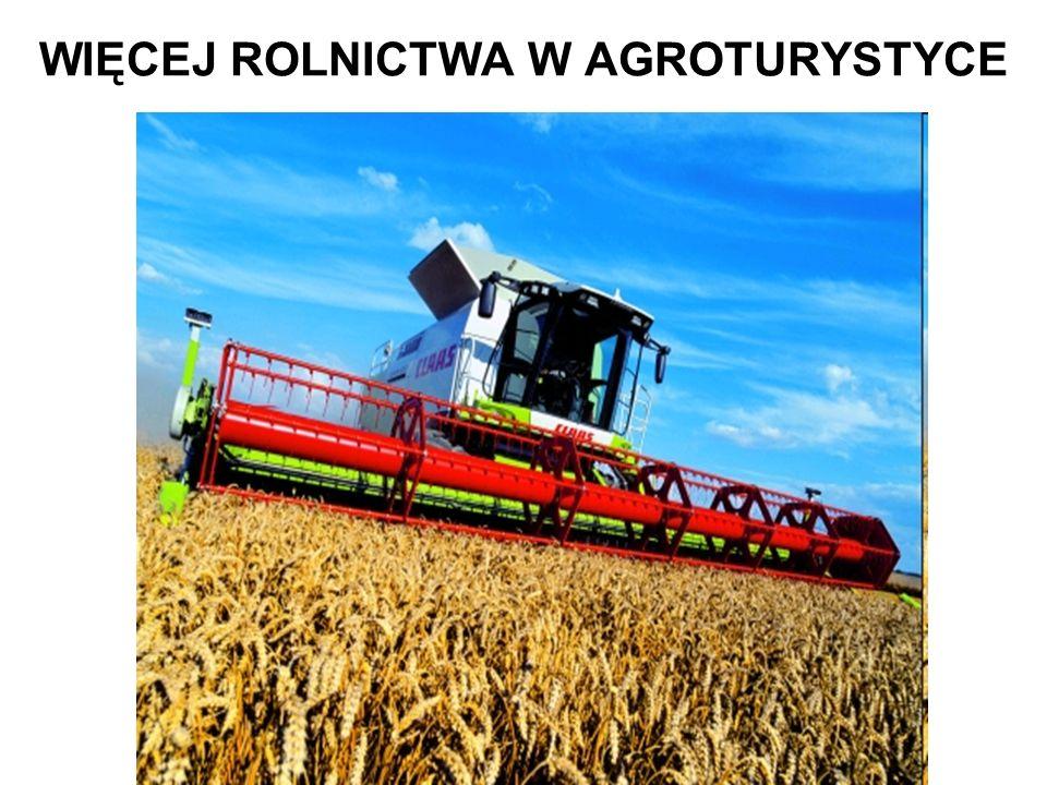 WIĘCEJ ROLNICTWA W AGROTURYSTYCE