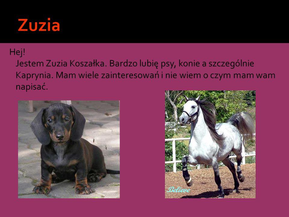 Hej! Jestem Zuzia Koszałka. Bardzo lubię psy, konie a szczególnie Kaprynia. Mam wiele zainteresowań i nie wiem o czym mam wam napisać.
