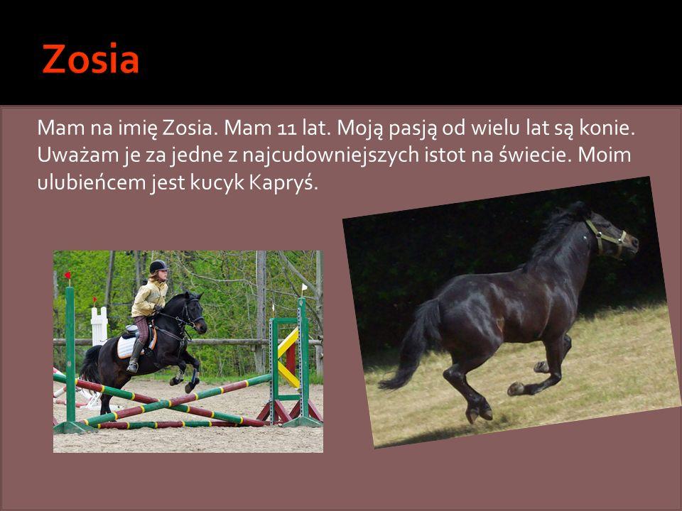 Mam na imię Zosia. Mam 11 lat. Moją pasją od wielu lat są konie. Uważam je za jedne z najcudowniejszych istot na świecie. Moim ulubieńcem jest kucyk K