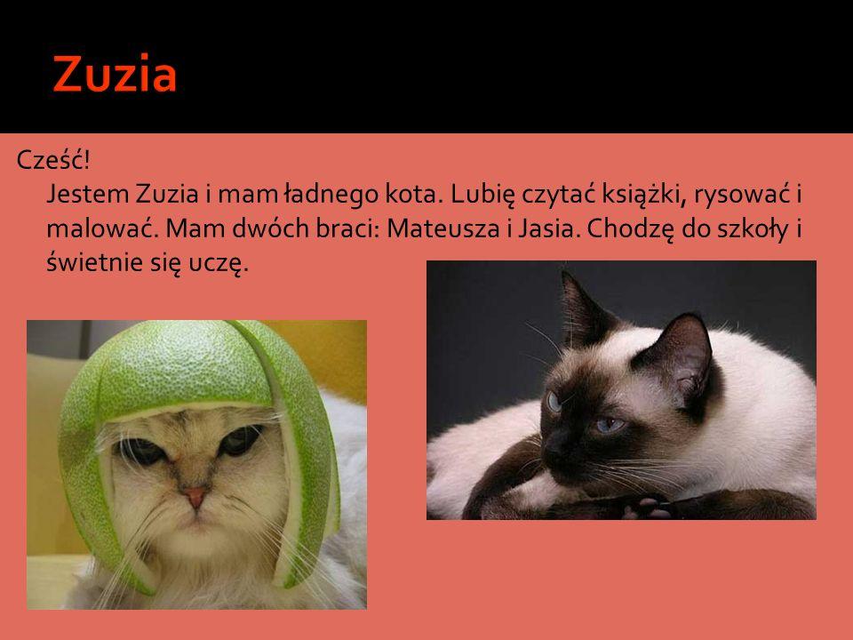 Cześć! Jestem Zuzia i mam ładnego kota. Lubię czytać książki, rysować i malować. Mam dwóch braci: Mateusza i Jasia. Chodzę do szkoły i świetnie się uc