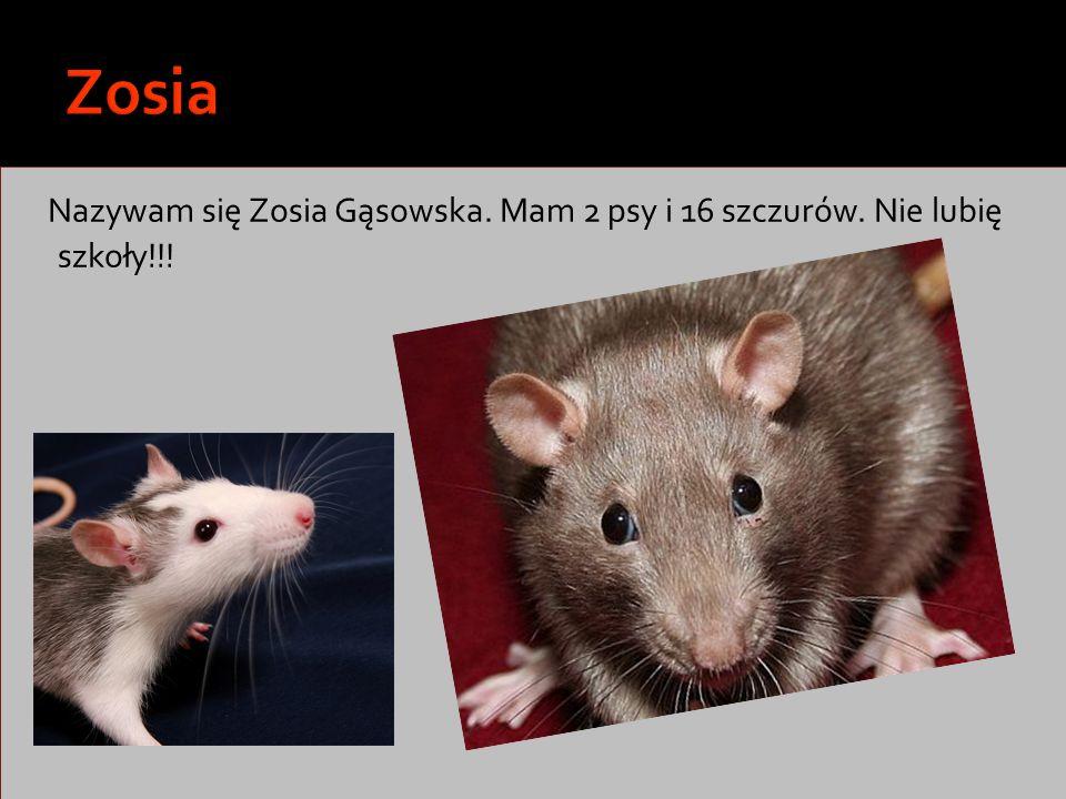 Nazywam się Zosia Gąsowska. Mam 2 psy i 16 szczurów. Nie lubię szkoły!!!