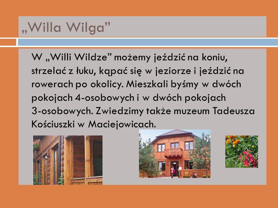 Willa Wilga W Willi Wildze możemy jeździć na koniu, strzelać z łuku, kąpać się w jeziorze i jeździć na rowerach po okolicy.