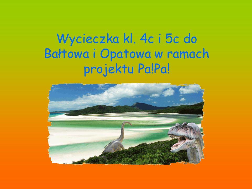 Wycieczka kl. 4c i 5c do Bałtowa i Opatowa w ramach projektu Pa!Pa!