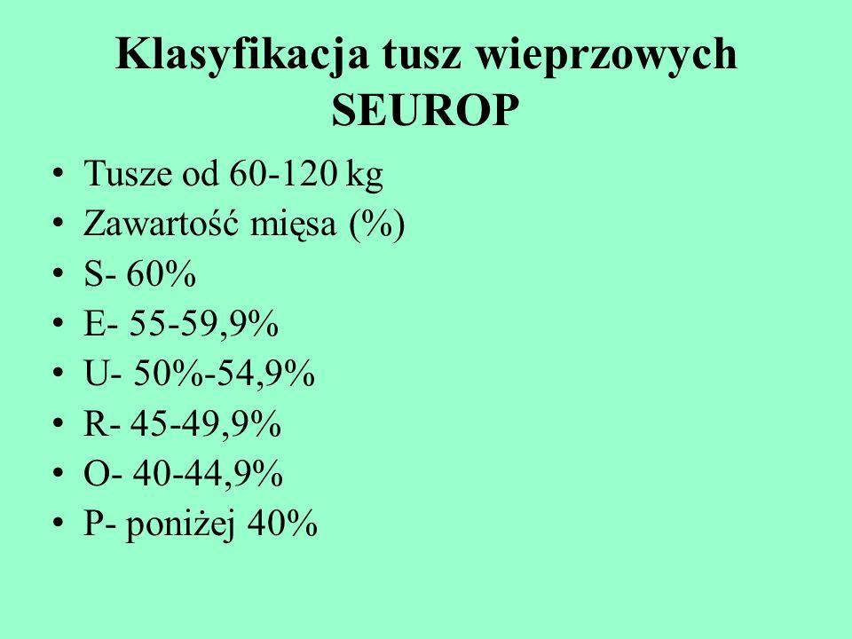 Klasyfikacja tusz wieprzowych SEUROP Tusze od 60-120 kg Zawartość mięsa (%) S- 60% E- 55-59,9% U- 50%-54,9% R- 45-49,9% O- 40-44,9% P- poniżej 40%