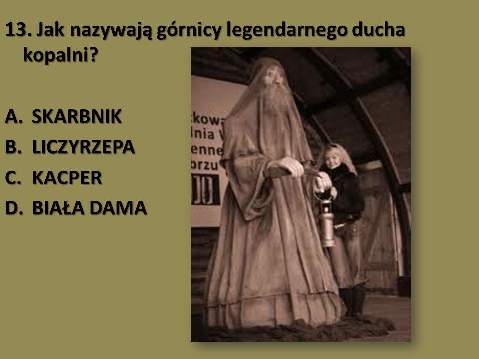 13. Jak nazywają górnicy legendarnego ducha kopalni? A.SKARBNIK B.LICZYRZEPA C.KACPER D.BIAŁA DAMA