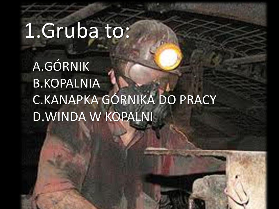 1.Gruba to: A.GÓRNIK B.KOPALNIA C.KANAPKA GÓRNIKA DO PRACY D.WINDA W KOPALNI