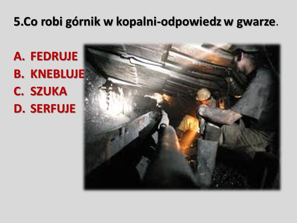 5.Co robi górnik w kopalni-odpowiedz w gwarze 5.Co robi górnik w kopalni-odpowiedz w gwarze.