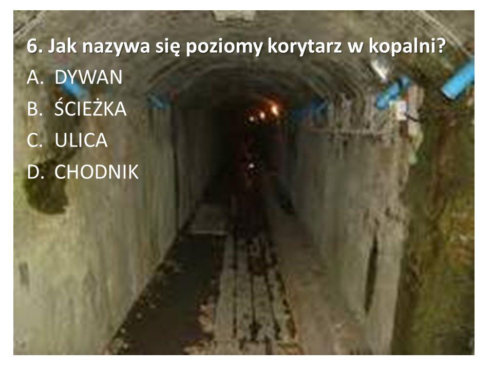 6. Jak nazywa się poziomy korytarz w kopalni? A.DYWAN B.ŚCIEŻKA C.ULICA D.CHODNIK
