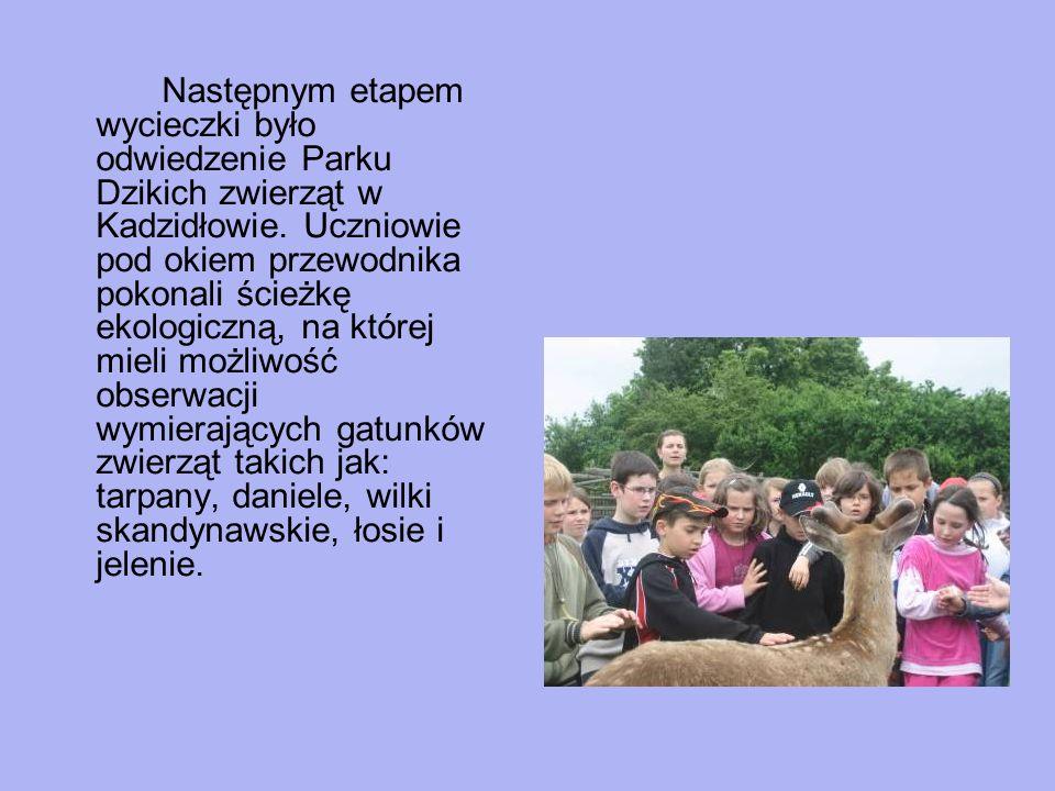 Następnym etapem wycieczki było odwiedzenie Parku Dzikich zwierząt w Kadzidłowie. Uczniowie pod okiem przewodnika pokonali ścieżkę ekologiczną, na któ