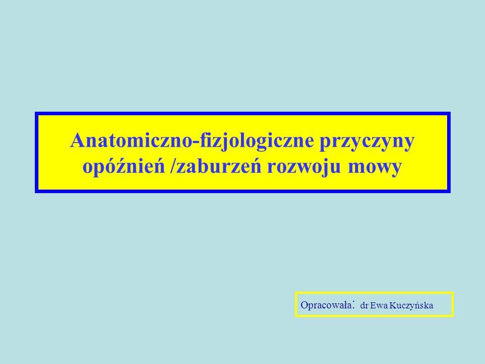 Anatomiczno-fizjologiczne przyczyny opóźnień /zaburzeń rozwoju mowy Opracowała : dr Ewa Kuczyńska