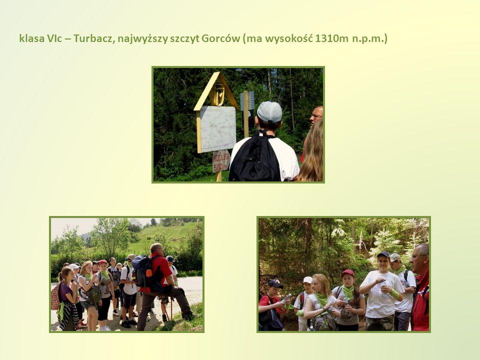klasa VIc – Turbacz, najwyższy szczyt Gorców (ma wysokość 1310m n.p.m.)