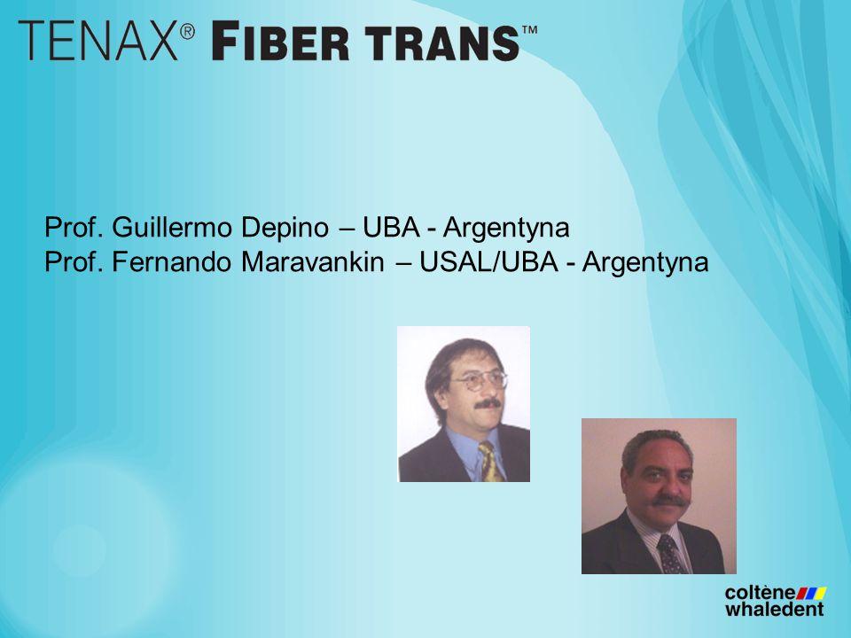 Prof. Guillermo Depino – UBA - Argentyna Prof. Fernando Maravankin – USAL/UBA - Argentyna