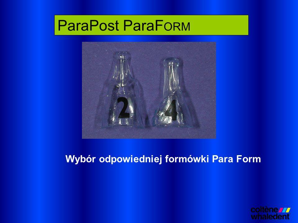 Wybór odpowiedniej formówki Para Form ParaPost ParaF ORM