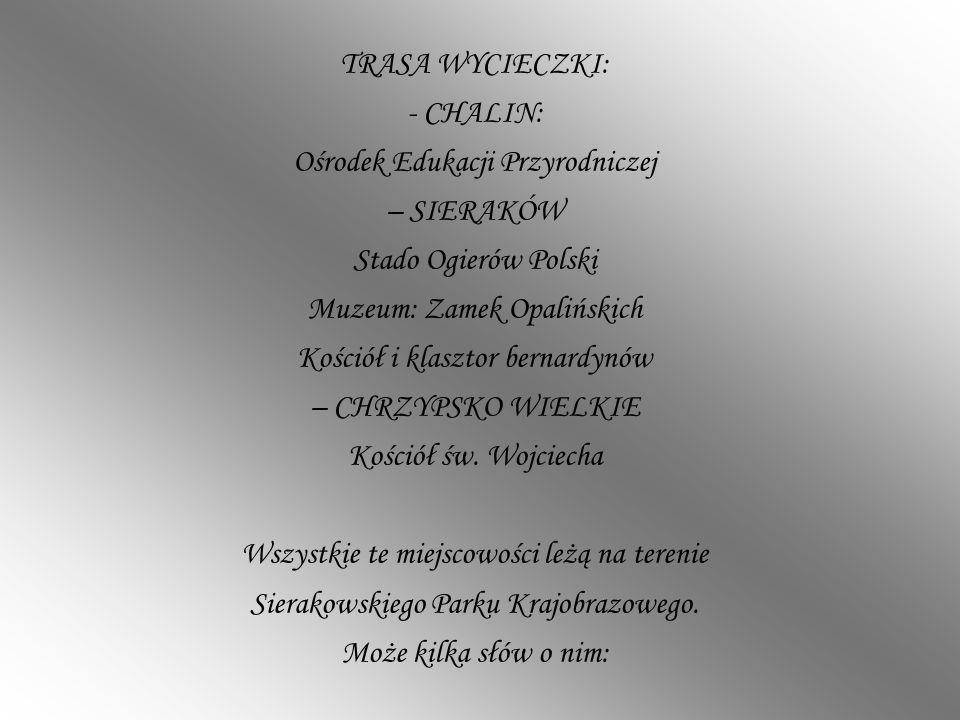 TRASA WYCIECZKI: - CHALIN: Ośrodek Edukacji Przyrodniczej – SIERAKÓW Stado Ogierów Polski Muzeum: Zamek Opalińskich Kościół i klasztor bernardynów – C