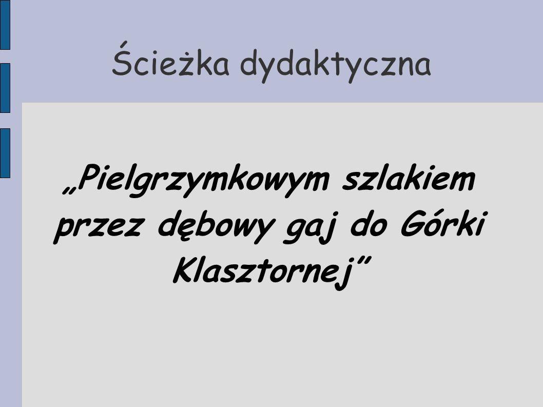 Kilka ważnych informacji Cel ścieżki: przybliżenie walorów turystycznych regionu gminy Łobżenica Trasa ścieżki: początek - Dworzec kolejki wąskotorowej w Łobżenicy.