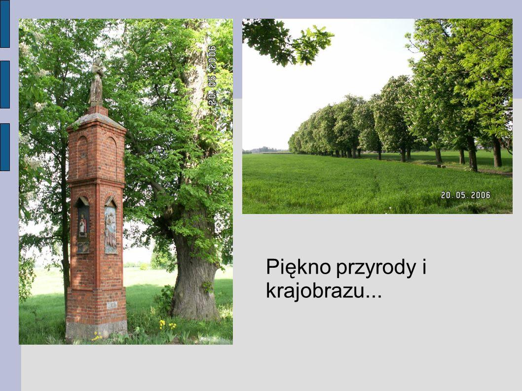 Piękno przyrody i krajobrazu...