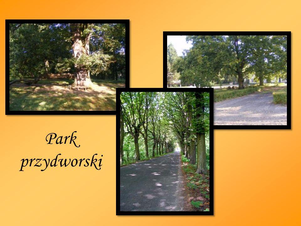 Park przydworski