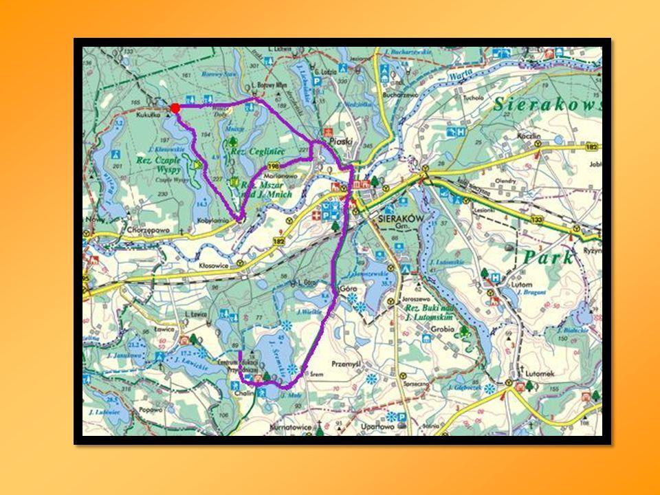 źródła informacji: www.sierakow.lasypanstwowe.poznan.pl www.zpkww.pl www.muzeum-sierakow.pl www.strykowski.net