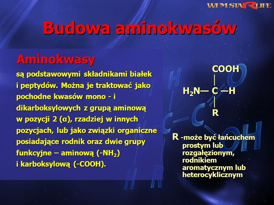 Budowa aminokwasów Aminokwasy są podstawowymi składnikami białek i peptydów. Można je traktować jako pochodne kwasów mono - i dikarboksylowych z grupą