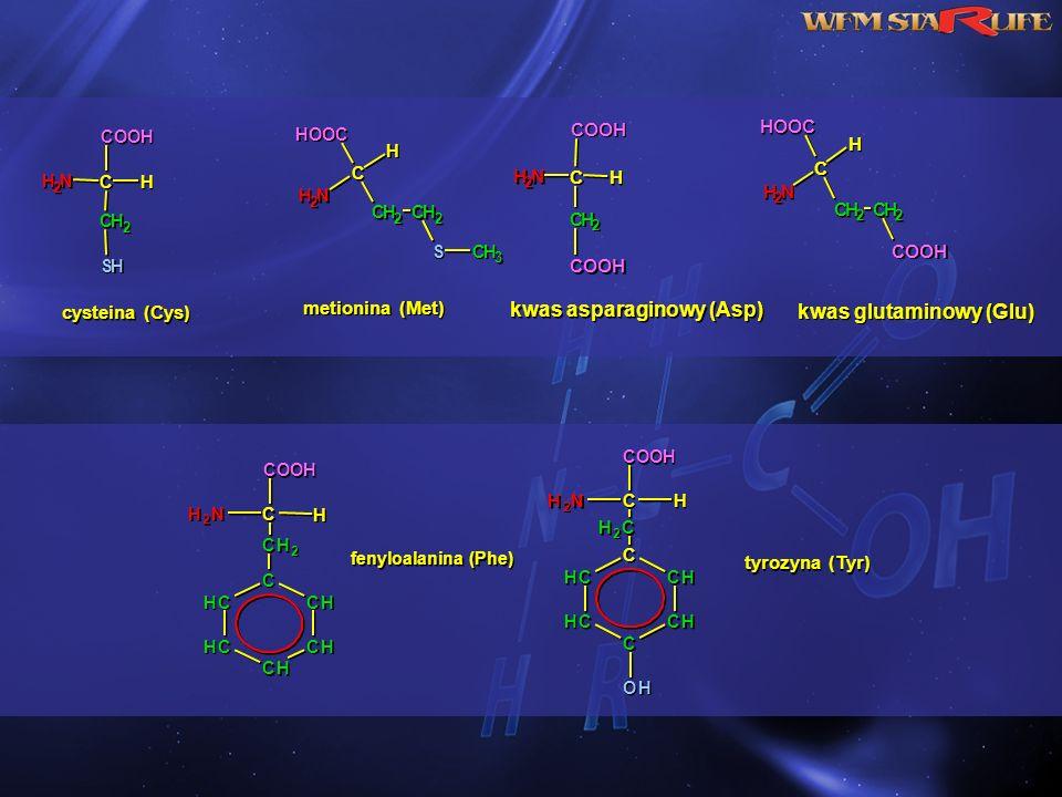 C C N N H H 2 2 H H C C H H 2 2 COOH S S H H C C N N H H 2 2 H H C C H H 2 2 HOOC C C H H 2 2 S S C C H H 3 3 cysteina (Cys) metionina (Met) C C N N H