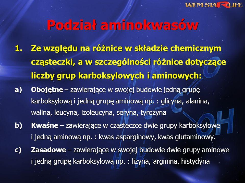 Podział aminokwasów 1.Ze względu na różnice w składzie chemicznym cząsteczki, a w szczególności różnice dotyczące liczby grup karboksylowych i aminowy
