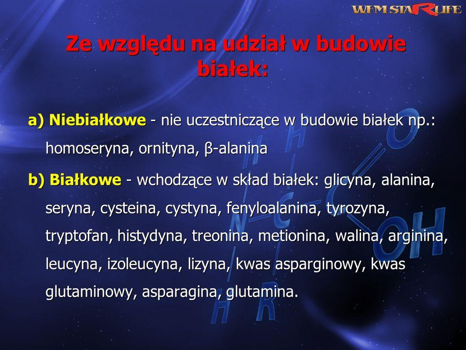 Ze względu na udział w budowie białek: a) Niebiałkowe - nie uczestniczące w budowie białek np.: homoseryna, ornityna, β-alanina b) Białkowe - wchodząc