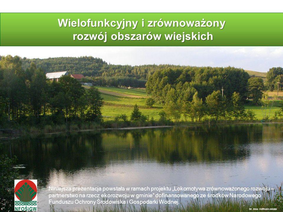 Wielofunkcyjny i zrównoważony rozwój obszarów wiejskich fot. Anna Hoffmann-Niedek Niniejsza prezentacja powstała w ramach projektu Lokomotywa zrównowa