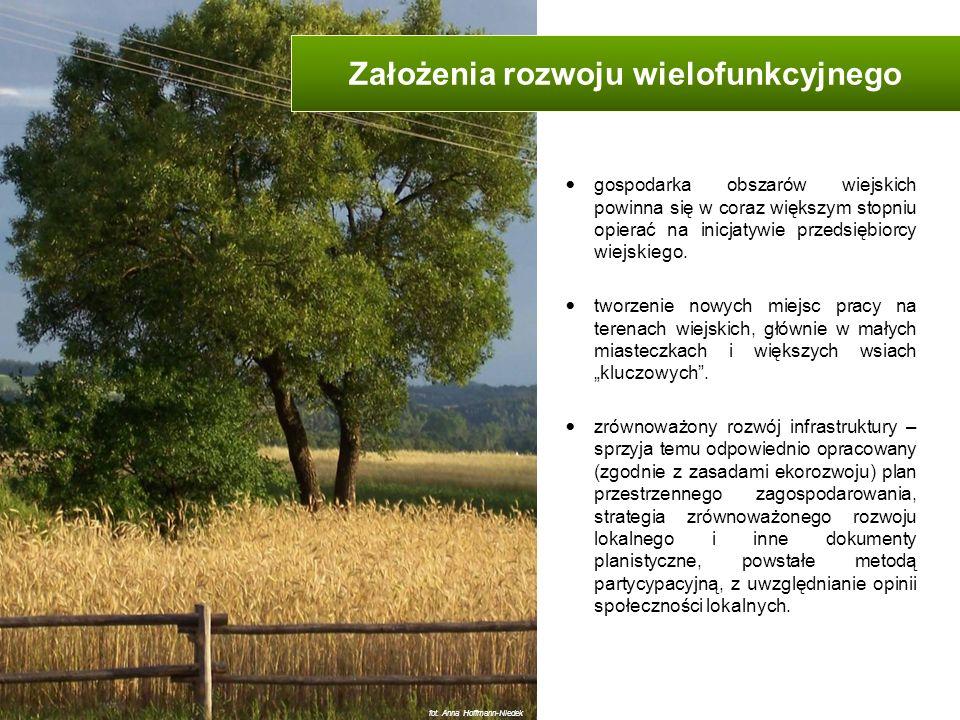 wytwarzanie żywności i produktów lokalnych i wysokiej jakości smakowej i żywieniowej, produkcja energii ze źródeł odnawialnych (rozwój instalacji wykorzystujących energię: wiatru, słońca, wody, biomasy, biogazu, ciepła ziemi), turystyka wiejska, ekoturystyka i agroturystyka, ochrona przyrody, tworzenie i konserwacja atrakcji przyrodniczych, przetwórstwo rolno-spożywcze, drobna produkcja, naprawy i podwykonawstwo (tzw.