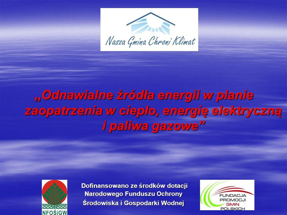 Projekt założeń do planu zaopatrzenia w ciepło, energię elektryczną i paliwa gazowe