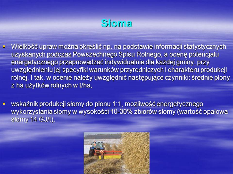 Słoma Wielkość upraw można określić np. na podstawie informacji statystycznych uzyskanych podczas Powszechnego Spisu Rolnego, a ocenę potencjału energ