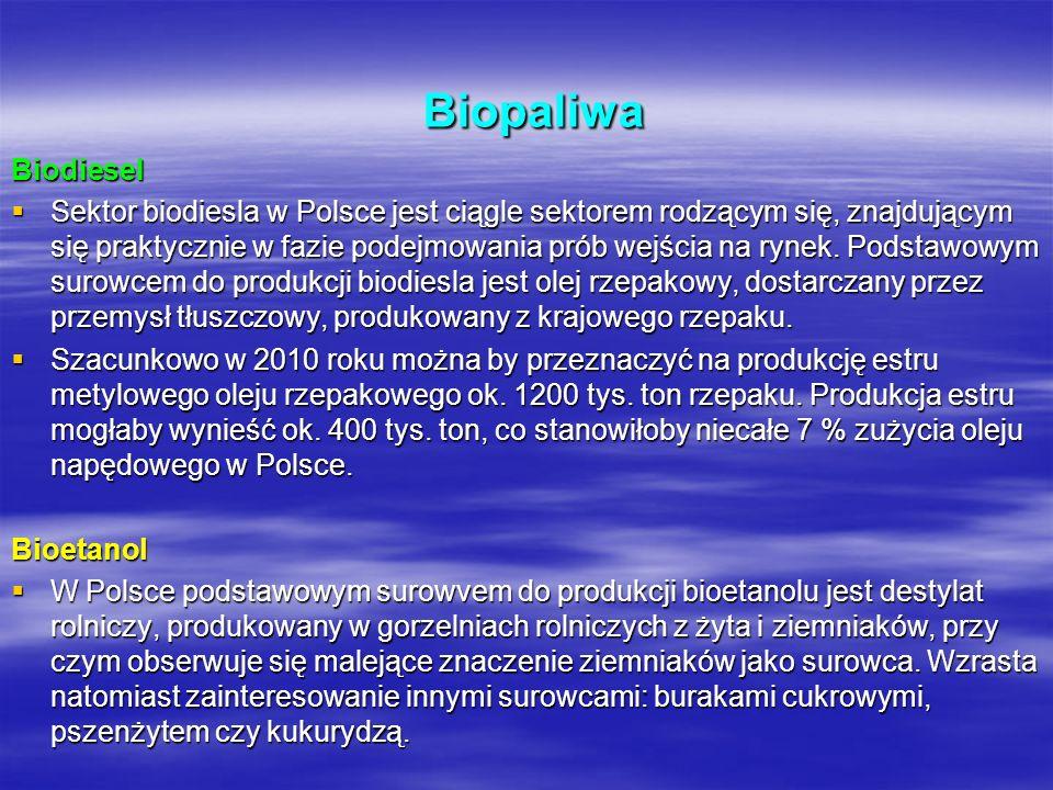 Biopaliwa Biopaliwa Biodiesel Sektor biodiesla w Polsce jest ciągle sektorem rodzącym się, znajdującym się praktycznie w fazie podejmowania prób wejśc