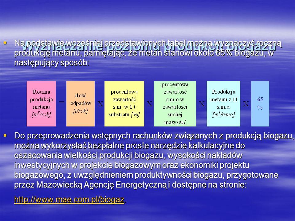 Wyznaczanie poziomu produkcji biogazu Wyznaczanie poziomu produkcji biogazu Na podstawie wcześniej przedstawionych tabel można wyznaczyć roczną produk