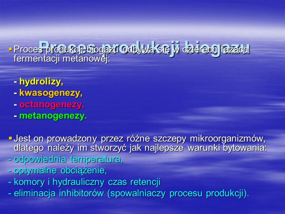 Proces produkcji biogazu Proces produkcji biogazu Proces produkcji biogazu odbywa się w czterech fazach fermentacji metanowej: Proces produkcji biogaz