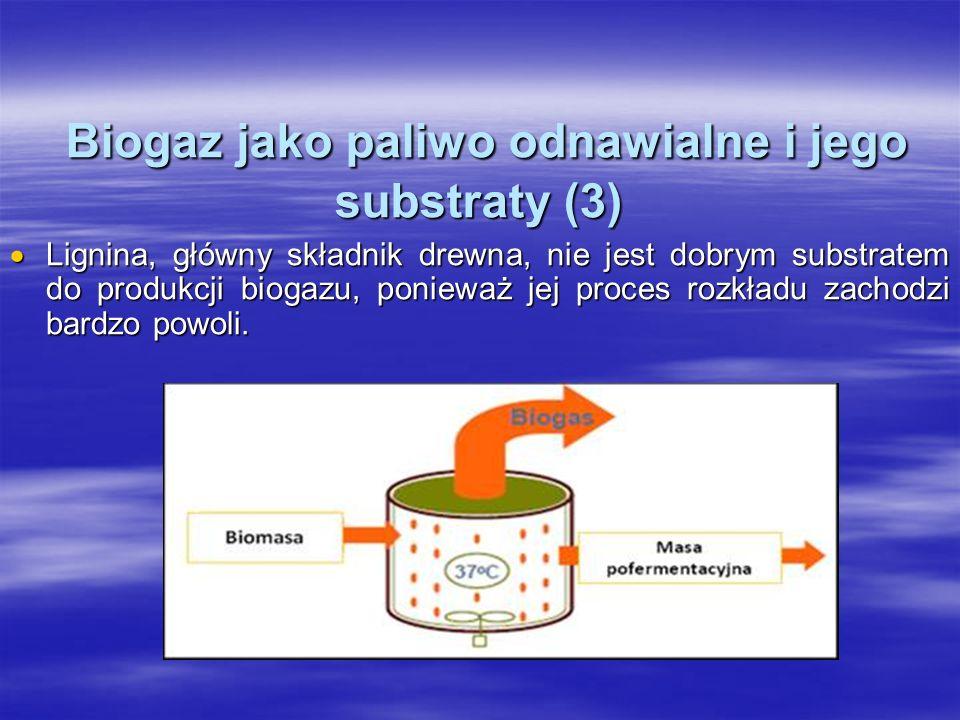 Biogaz jako paliwo odnawialne i jego substraty (3) Biogaz jako paliwo odnawialne i jego substraty (3) Lignina, główny składnik drewna, nie jest dobrym