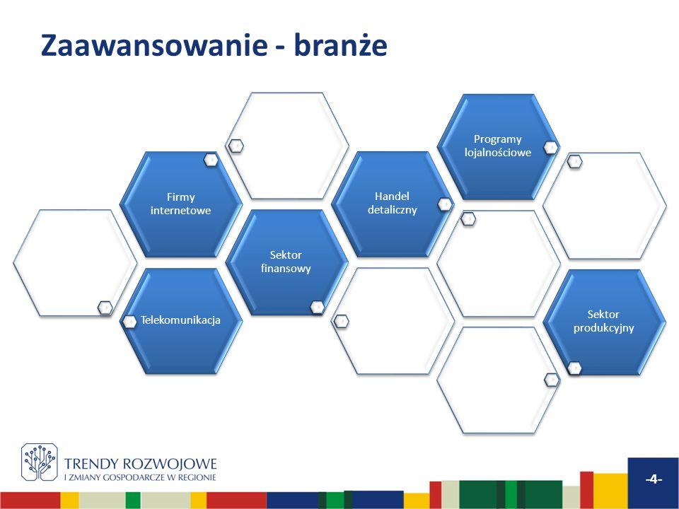 Zaawansowanie - branże -4- Telekomunikacja Sektor finansowy Firmy internetowe Handel detaliczny Programy lojalnościowe Sektor produkcyjny