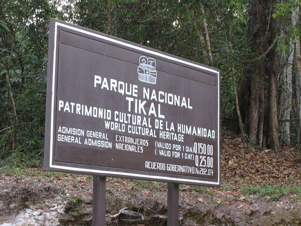 Tikál, Tical – miasto Majów położone na terenie Gwatemali w departamencie El Petén w pobliżu jeziora Petén Itzá. Najprawdopodobniej dawna stolica pańs