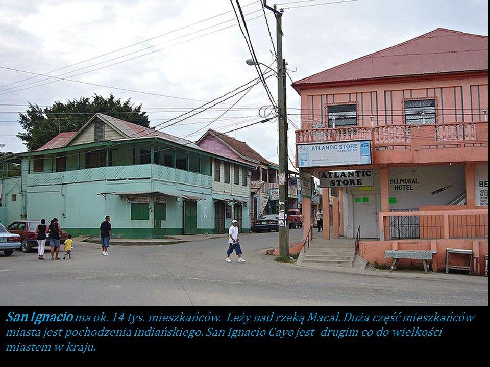 Dystrykt Cayo – dystrykt w zachodnio-centralnej części Belize, ze stolicą w San Ignacio Cayo. W dystrykcie znajduje się stolica kraju Belmopan oraz in