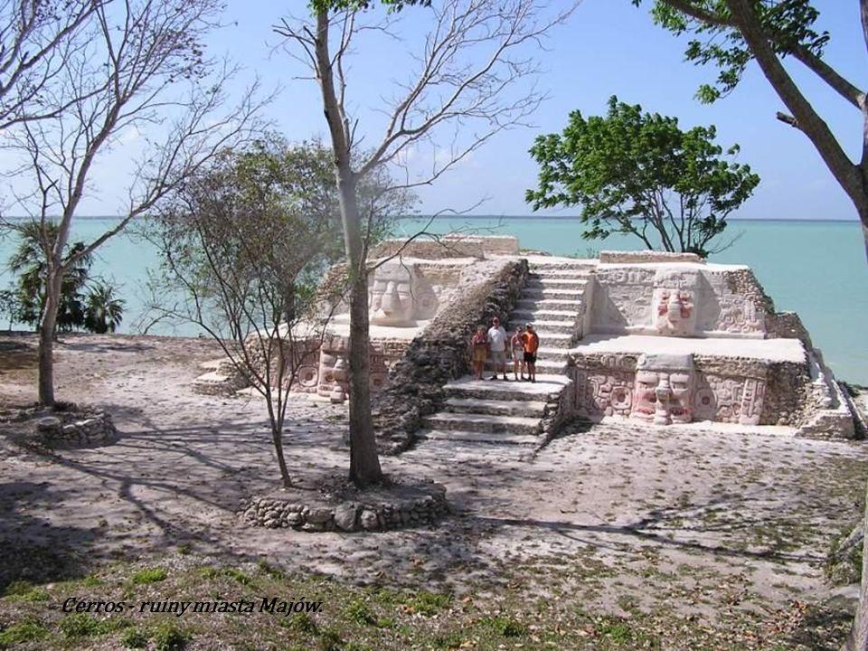 Cerros - ruiny miasta Majów. Znajdują się w Chetumalské Bay, około 5 km od miasta Corozal. W przeszłości, głównie w latach 350 p.n.e do 250 n. e.był t