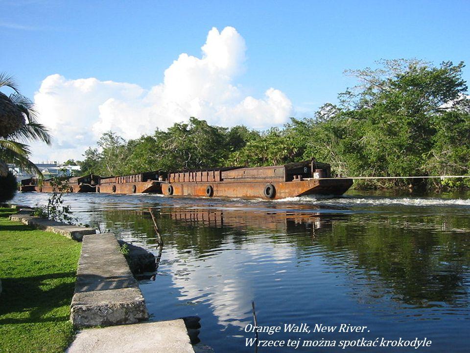 Orange Walk, stolica dystryktu Orange Walk Dystrykt Orange Walk dystrykt w północno-zachodniej części Belize, ze stolicą w Orange Wal k
