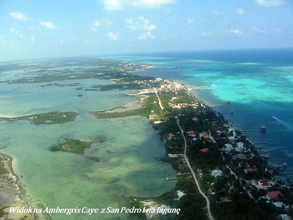 Ambergris Caye jest największą wyspą, spośród 200 należącą do Belize (56 km na płn-wsch od Belize City). Ma 34 km długości. Główne jej miasto to San P