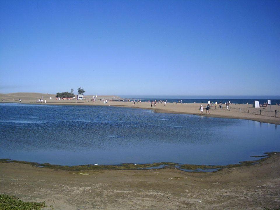 Zbiornik wodny Charco de Maspalomas