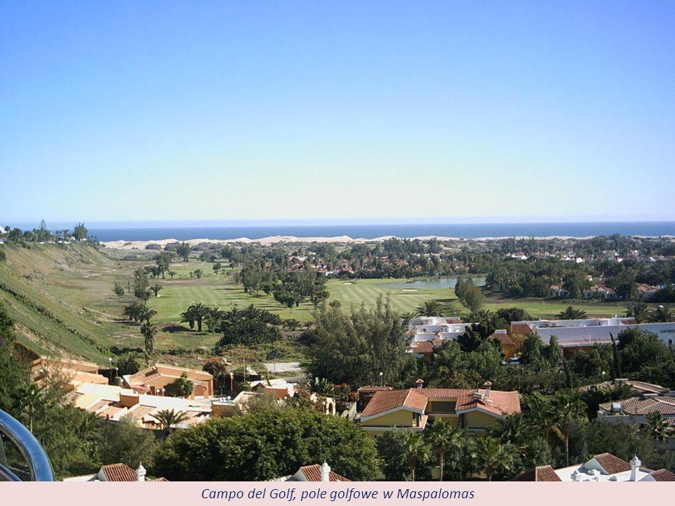 Dunas de Maspalomas - wydmy na Playa de Maspalomas. Zajmują obszar ok. 418 ha.
