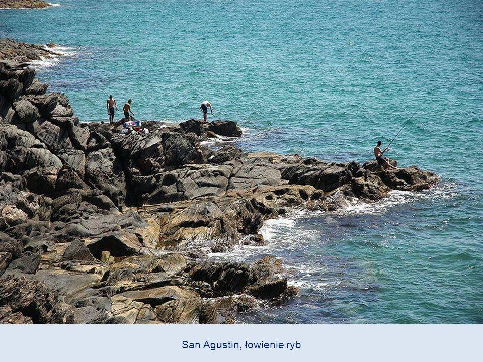 Czarne kraby w pobliżu plaży San Agustin