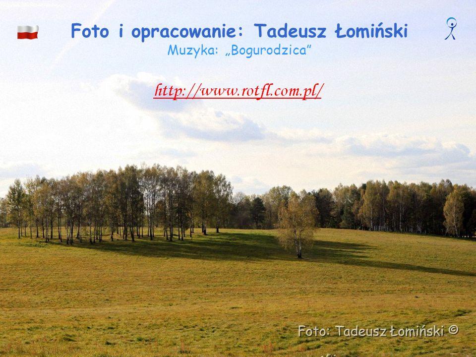 Bitwa pod Grunwaldem Obraz Tadeusza Popiela (1863-1913) i Zygmunta Rozwadowskiego (1870-1950), uczniów Matejki. Na stałe diorama wystawiana jest w Muz